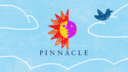 Pinnacle citv id