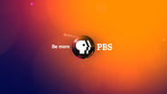 PBS system cue orange 2009