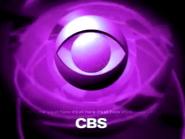 Cbs 2000 purple