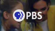 PBS system cue - Science - 2020