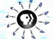 PBS ID - Gymnastics - 1998