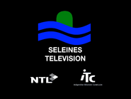 Seleines retro startup 1995