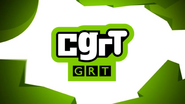 CGRT ID 2007