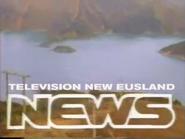 TVNE News 1985