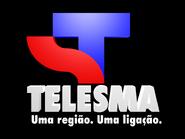 Telesma 1991 TVC