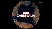 GRT Cardinalia ident 2013 (bike)