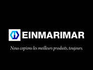 Einmar spoof on Téléirréel (2002)