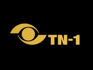 TN1 ID 1980 Color