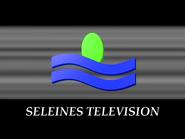 Seleines 1989 Generic ID frontcap