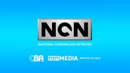 NCN 1991 startup slide remake