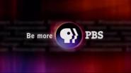 PBS system cue 2002 18