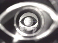 CBS ID 1995 42