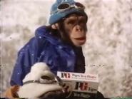 PG Tips AS TVC 1978 2