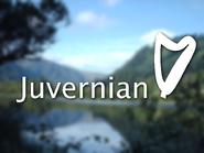 Juvernian ID - Glendalough - 1994