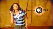 PBS system cue 2002 17