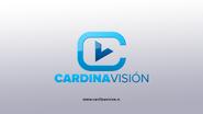 Cardinavision 2010 ID
