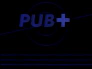 C Plus Pub ID 1991