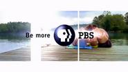 PBS Wide intro 2002 3