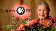 PBS system cue 2002 14