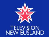 Television New Eusland