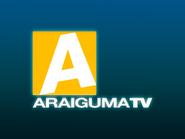Araiguma TV 1990 ID