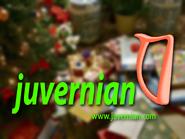 Juvernian ID Christmas 1998