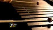 PBS ID - Symphony - 2009