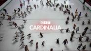 GRT Cardinalia ID 2013 Penguins