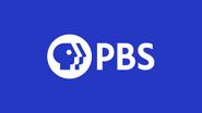 PBS 2019 ID blue