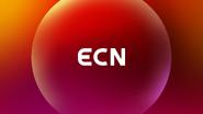 ECN Ident 2020
