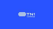 TN1 ID - 2017 - 1