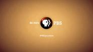 PBS system cue - social media 2014 - 2