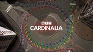 GRT Cardinalia ID 2013 Capes