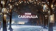 GRT Cardinalia ID - Lanterns - Christmas 2015