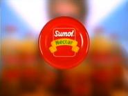 TN1 sponsorship billboard - Sumol Nectar - 1999