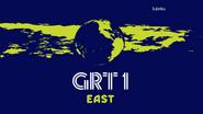 GRT East 1981 Mirror Globe Symbol (2014)