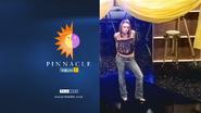 Pinnacle Katy alt id
