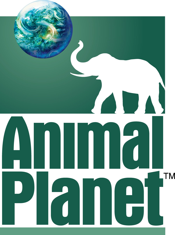 Animal Planet (Azorita)