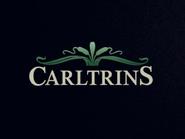 Carltrins ID - 1982 - 1995