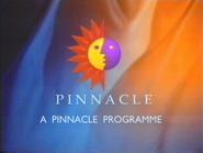 01 pinn 1993