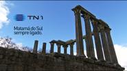 TN1 Ident 2013 (4)