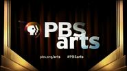 PBS system cue - PBS Arts - 2013