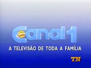 Canal 1 de TN promo 1993 - 1