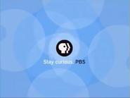 PBS ID blue 2000