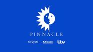 Pinnacle startup slide 2015