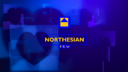 Northesian Hearts Alt ID 1999 Wide