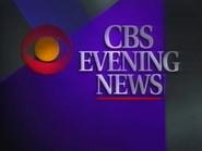 CBS EN open 1991