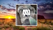 NTV2 Koala ID 2021