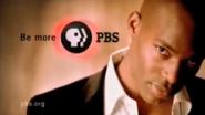 PBS system cue 2002 11