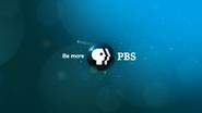 PBS system cue blue 2009